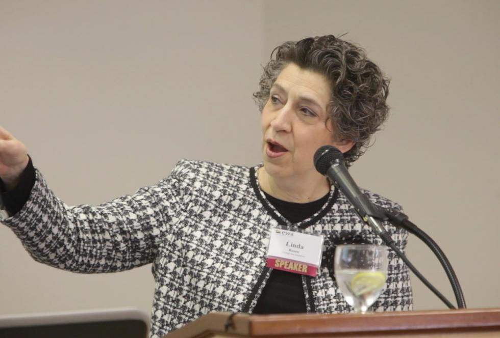 "Linda Rosen speaks at EWA's seminar for reporters, ""STEM and Beyond: Strengthening the Skills of Students and Journalists."""
